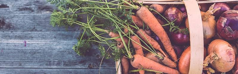 Panier de légumes bios