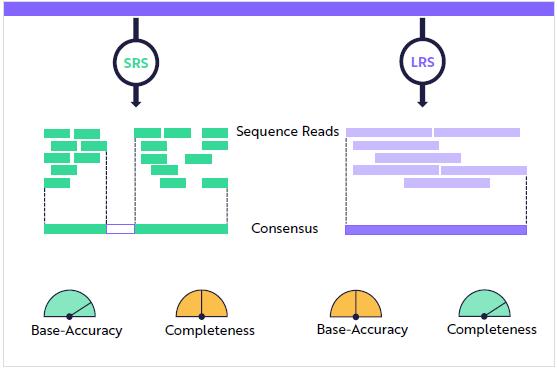 Comparaison système SRS-LRSstemes-ark-investi-big-ideas-2021