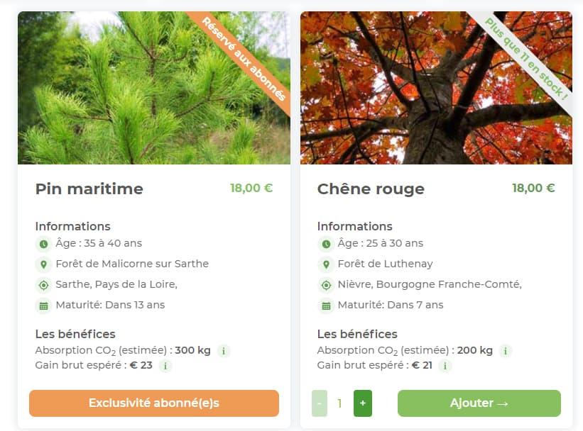 Illustration marché aux arbres d'EcoTree
